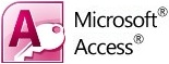 MS Access consulting services