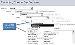 Microsoft Access Cascading Combo Boxes